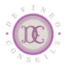 DEVINEO CONSEILS